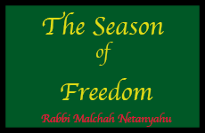season of freedom cover
